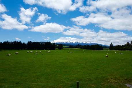 KiwiRailNorthernScenic