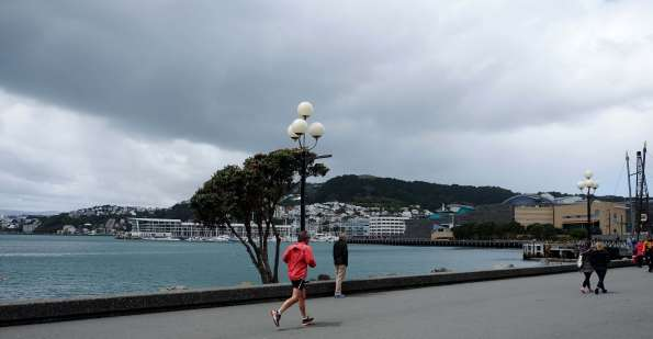 Swimmers in Wellington