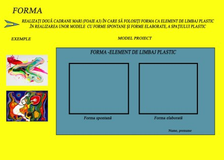 forma-proiect