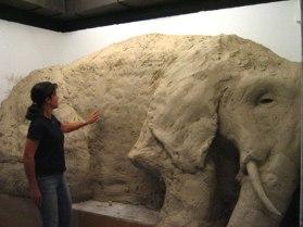 Elephant in Gallery 5, clay, wood, 8'x11'x5', 2007