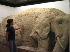 Elephant in Gallery 5, clay, wood, 8'x11'x5', 2007