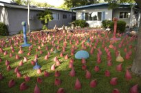"Erin Jackson, ""Pink Flamingoes"""