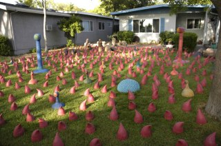 """Erin Jackson, """"Pink Flamingoes"""""""