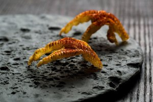 Black porcelain with surface texture formed by geese feeding. Fried chicken's feet. food by Dan Barber.photograph by Andrew Scrivani