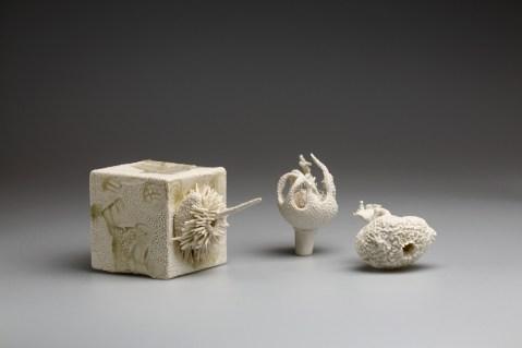 2018, Porcelain, Bogong wood-ash from the Bogong High Plains, Australia, sea-sponge, Cube H105 x W105 x D105 mm; Sea-flower H110 x W65 x D65 mm; Sea-sponge H60 x W85 x D115 mm