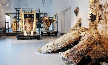 BWA Ceramic & Glass Gallery, Wroclaw, Poland, 2013 (photo: A. Dobrowolska)