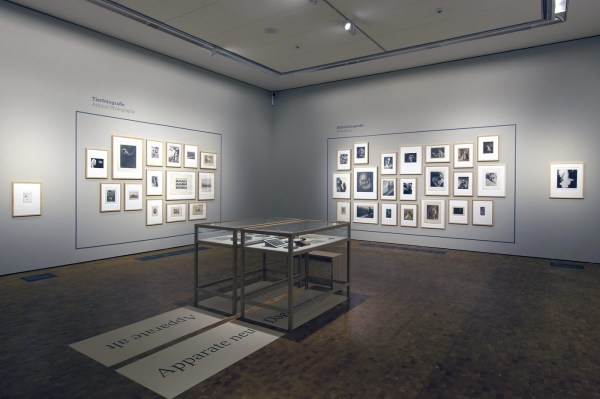 Museum of Contemporary Art Photography