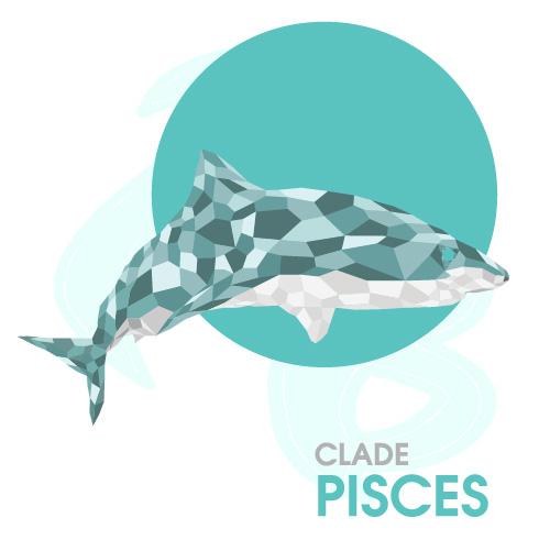 Clade Pisces