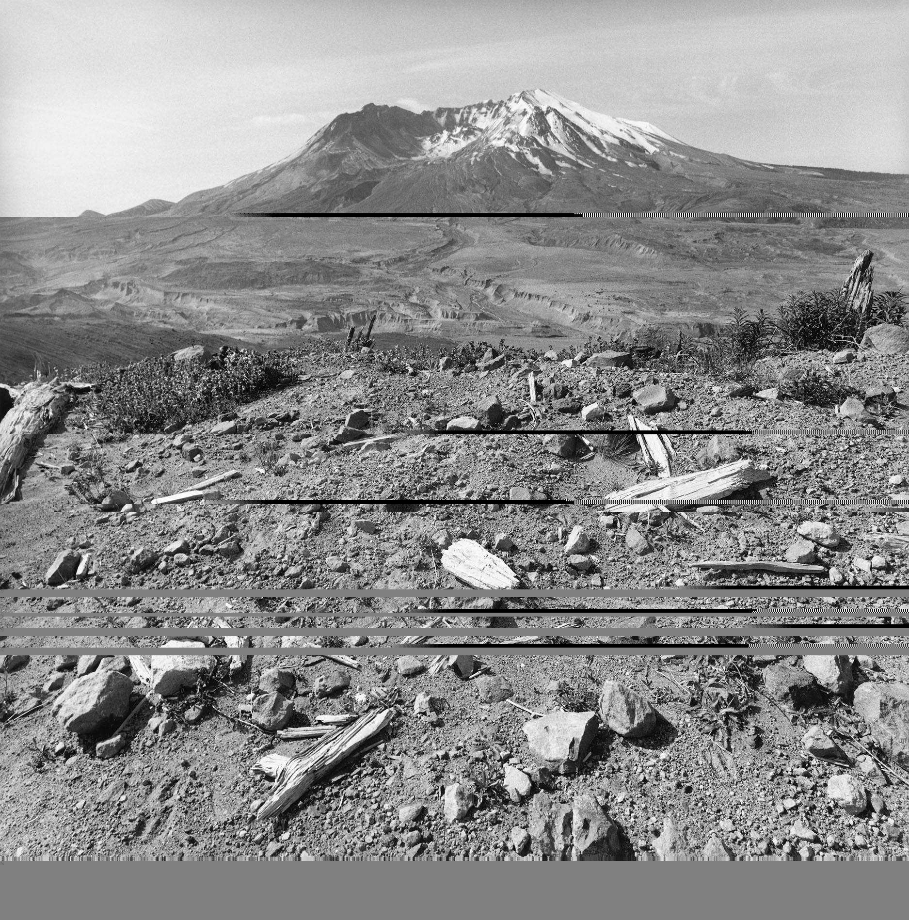 Mount Saint Helens, Washington, 2001. Gelatin silver print. © Lee Friedlander, Courtesy Fraenkel Gallery, San Francisco