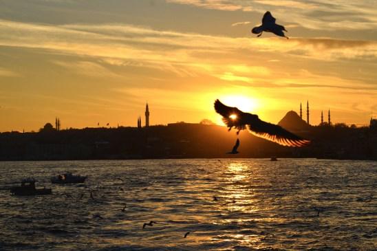 artborghi-istanbul-goodbye-2