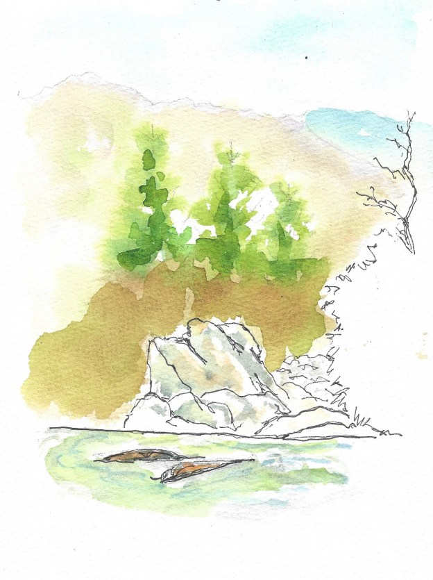 Pisgah Natl Forest scene