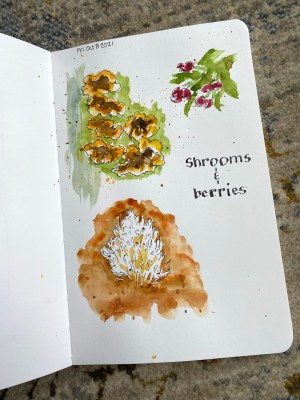Shrooms and berries