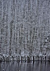 High Coast / Köpmanholmen - Vinteralar