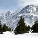 France / Chamonix - Winter wonderland III