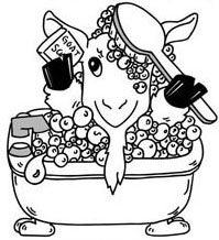 Logo Design - Far Above Rubies Goat Milk Soap