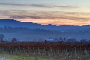 Cheryl Strahl Sunset From The Vineyard