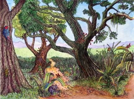 Rosey Rosenthal Edge Forest