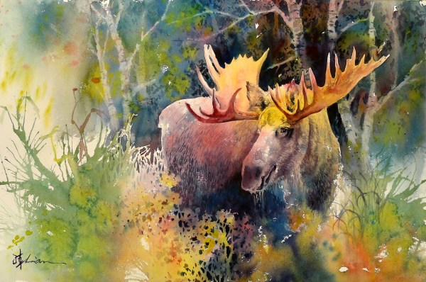 Moose Watercolor Painting Animals