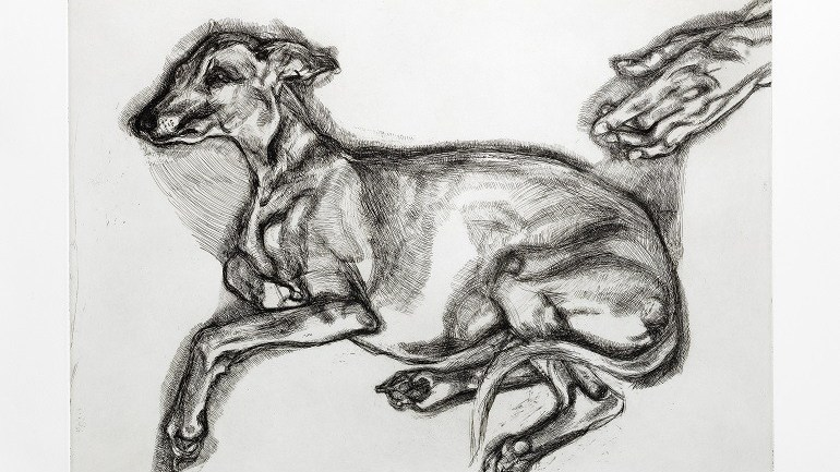 Whippet Dog Etching By Lucian Freud Sold for $146,411