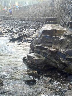 150211 3 steps into water IMG_3493 adj 250x333px
