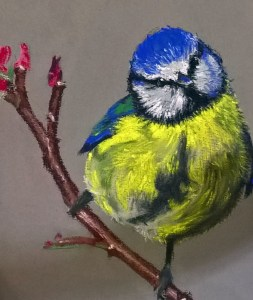 art for beginners, a pastel drawing done in our Lydiate, Merseyside, art group