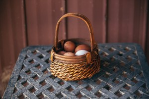 Assisted Hatching: What is it and why does my IVF Clinic do it?