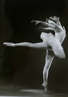 ballets-russes2-1-236x334