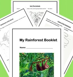 Free Printable Rainforest Worksheets [ 1200 x 800 Pixel ]