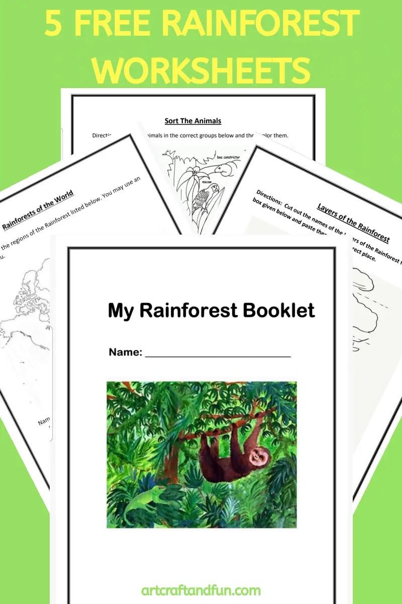 medium resolution of Free Printable Rainforest Worksheets