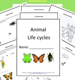 Get Free Printable Animal Life Cycle Worksheets Today!!!! [ 1200 x 800 Pixel ]