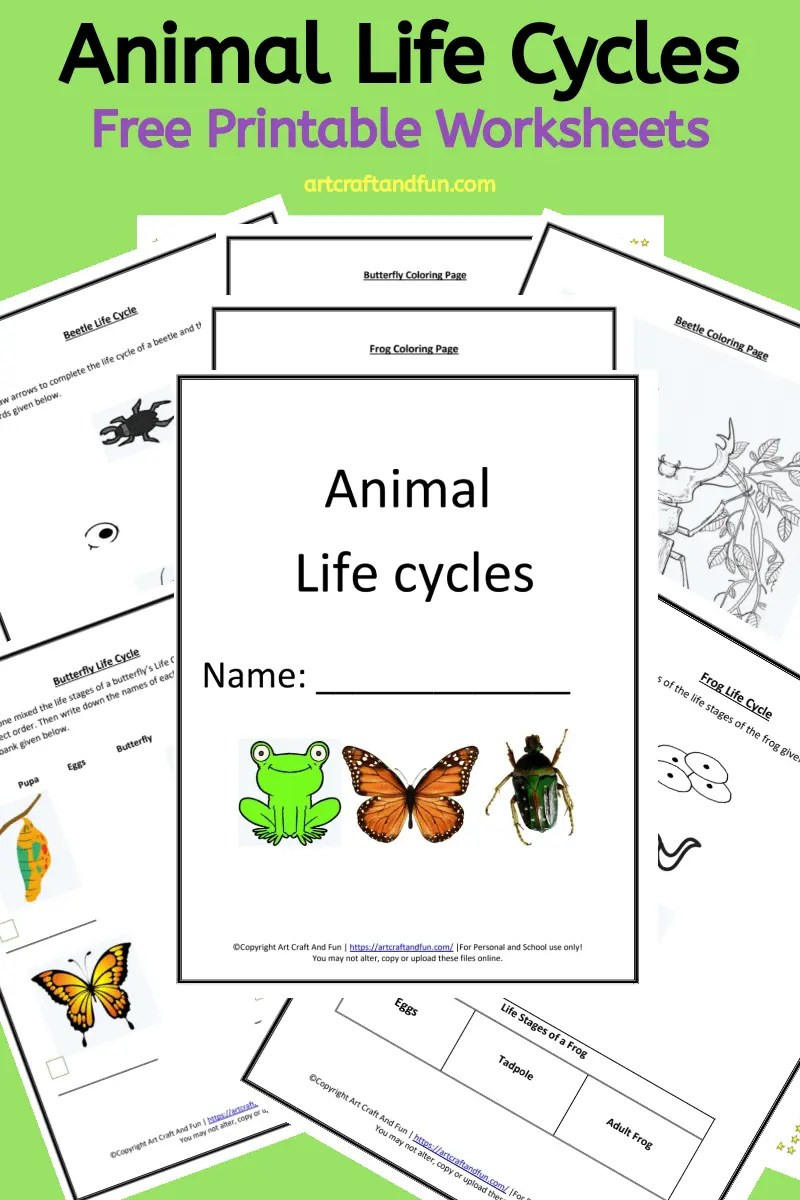 hight resolution of Get Free Printable Animal Life Cycle Worksheets Today!!!!