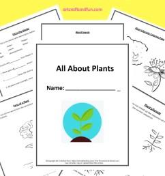 Grab 5 Free Printable Plant Worksheets [ 1200 x 800 Pixel ]