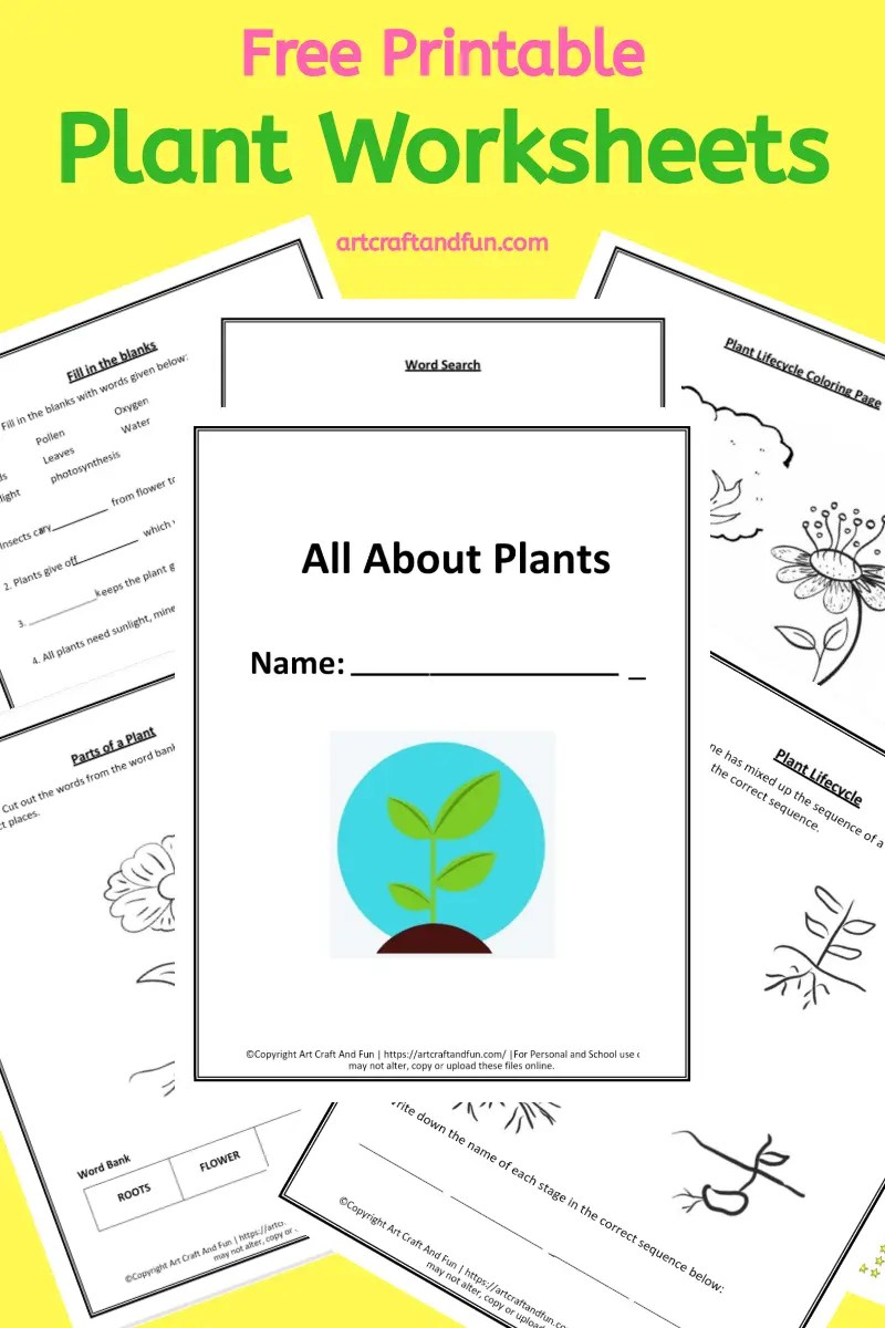 hight resolution of Grab 5 Free Printable Plant Worksheets