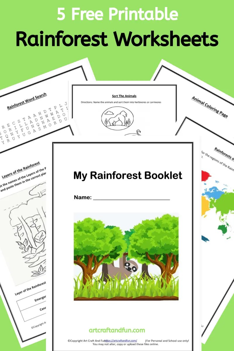 hight resolution of Free Printable Rainforest Worksheets