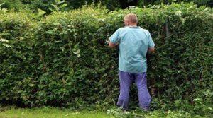 Добър градинар в София цена