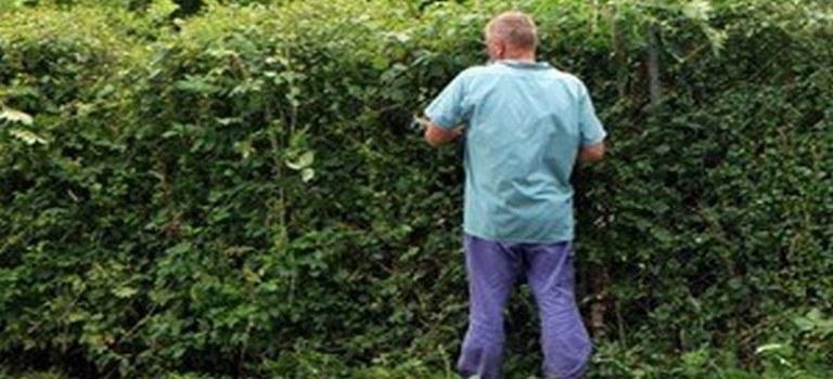 Добър градинар в София цена сравнение