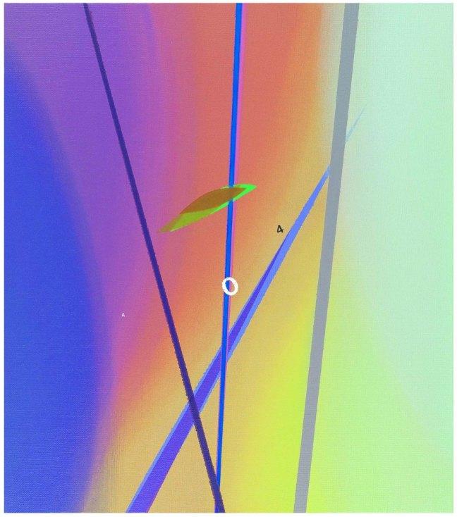 GIANLUCA SGHERRI - Senza titolo, 2009, Olio su tela, 80x70cm