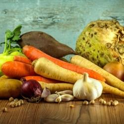 Alimentación y ecología