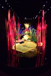 """Dan Chihuly """"Mille Fiori"""" Photo by Erin K. Hylton 2016"""