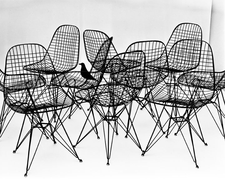 16. An Eames Celebration. Wire Chairs with bird, 1953. Photo Charles Eames. ∏ Eames Office LLC.jpg