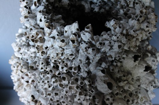 barnacle urn....hand applied barnacles - stunning, textural