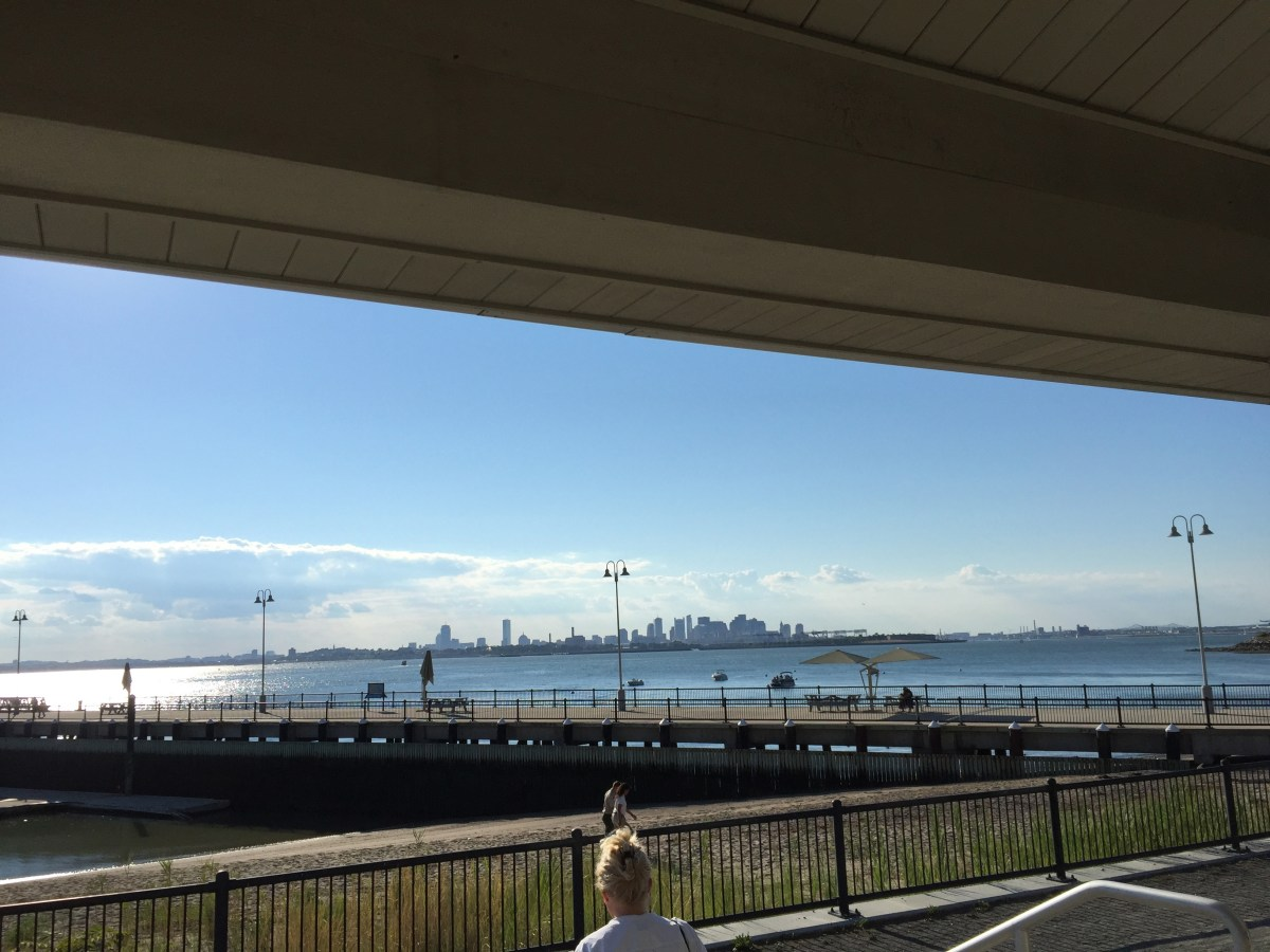 city-view-spectacle-island-boston.jpg