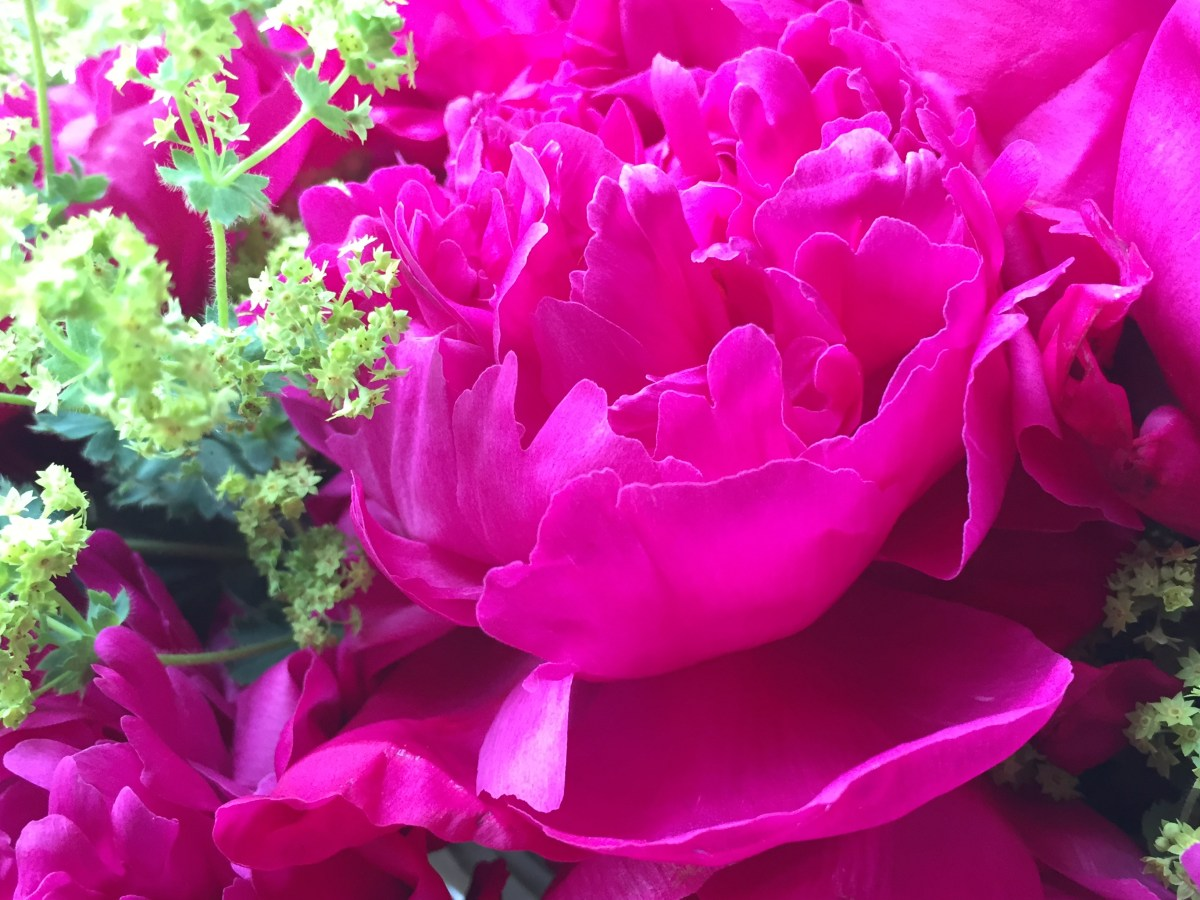 floral-peony-graduation-artefacthome-3