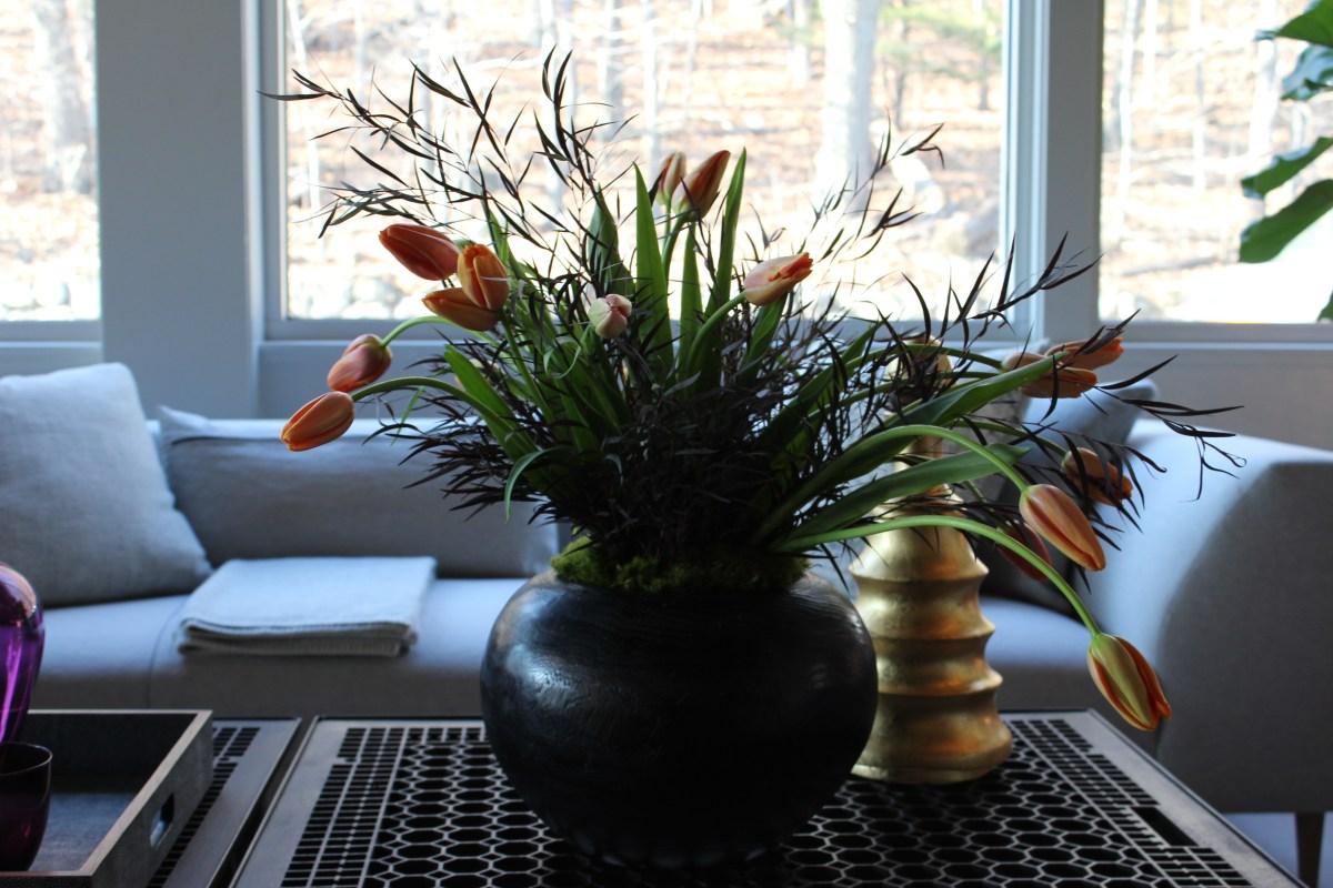 french-tulip-hot-dark-6-artefacthome