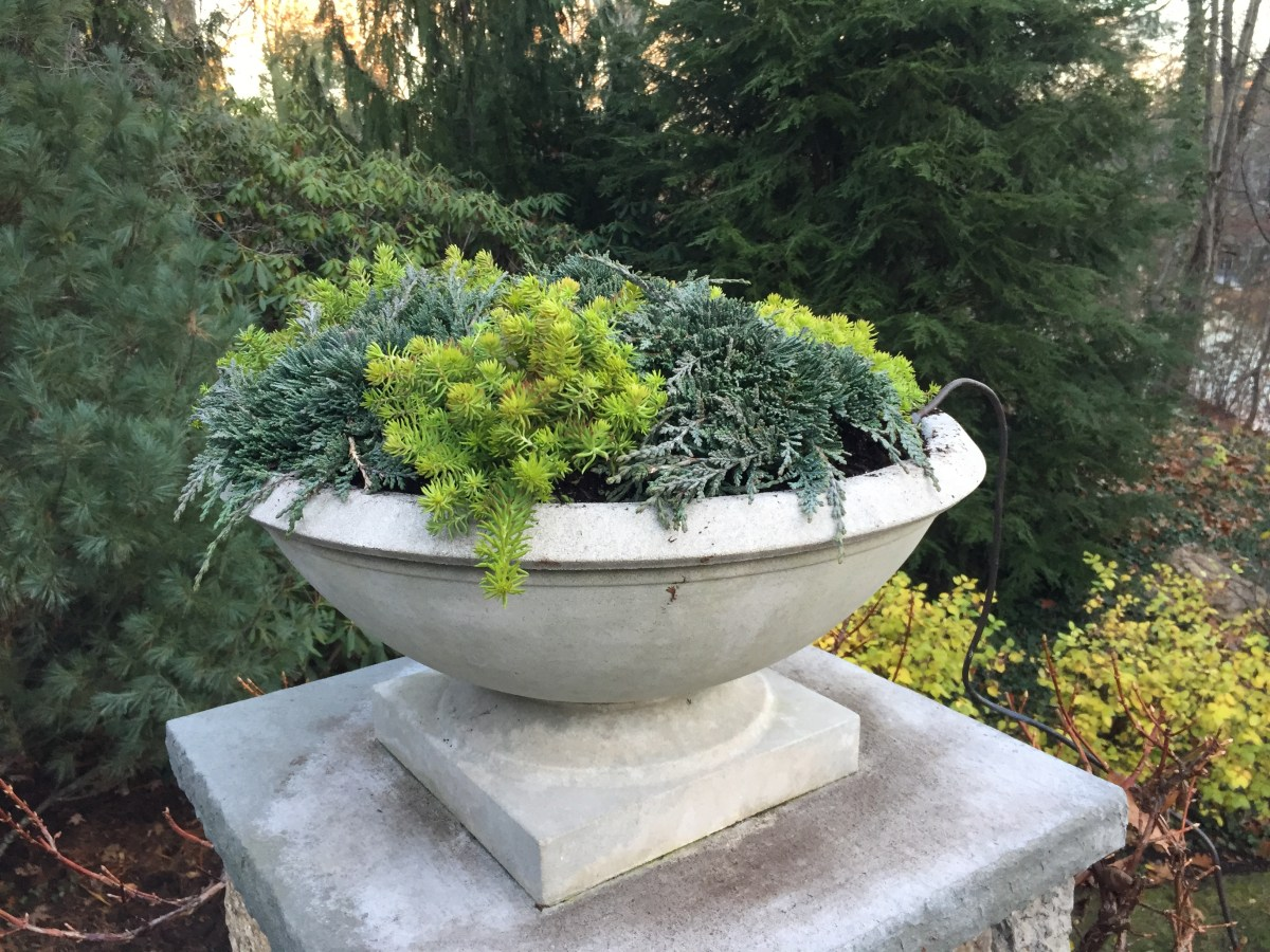 winter-2016-wellesley-2-low-urns-1