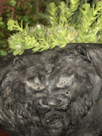 safari planter-succulents-3-pennoyernewman@artefacthome