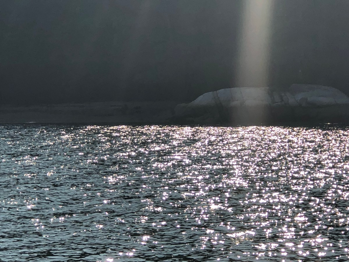 damariscotta river cruise 8-070218