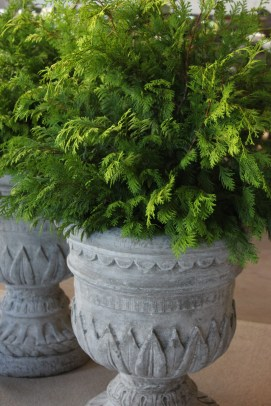 wall hall urns with cypress-pennoyer newman@artefacthome