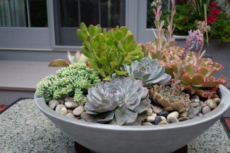 modern bowl - great centerpiece, lovely in limestone, lead grey or matte black