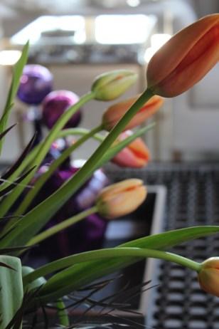 french-tulip-hot-dark-5-artefacthome.